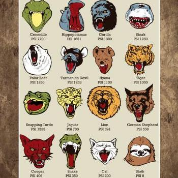 Wall Art, Know your Chomps, PSI Chart, Diagram, Science poster, Sloth, Slothzilla, KNOWLEDGE